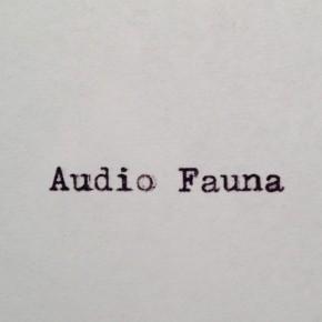 """SHERIFFI X DIGGAR: AUDIO FAUNA """"INTO THE LIGHT"""""""